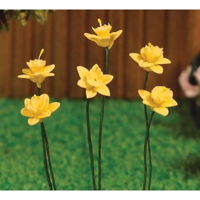 Spring Daffodils, 6 pcs