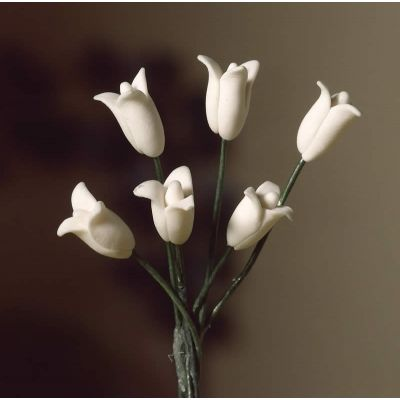 White Tulips, 6 pcs