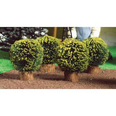 Round Box Bushes, 4 pcs