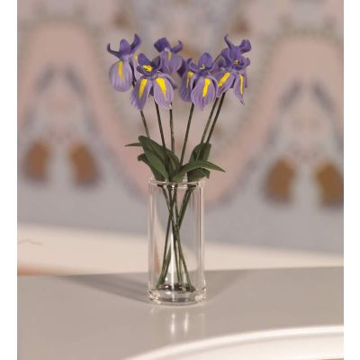 Six Beautiful Irises