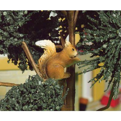 Nuttella, the Squirrel (PR)