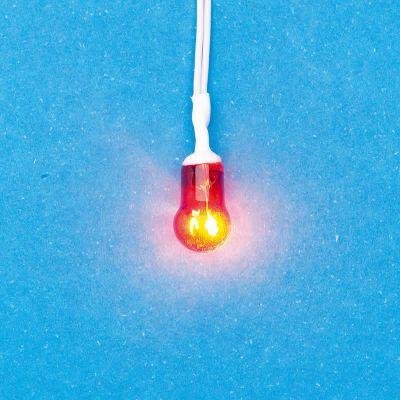 Pre wired, Orange Globe Bulb for Fire grate/ basket