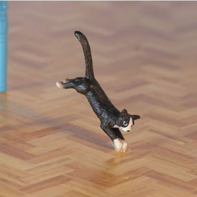 Gizmo the Jumping Cat (PR)