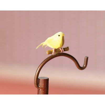 Saffron the Canary Bird