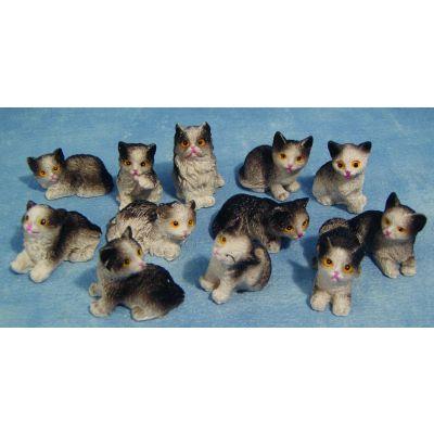 Cats B/W (priced each)