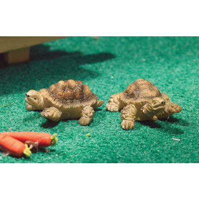 Terry & Jerry Tortoises (PR)