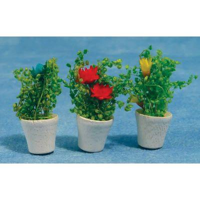 Potted Flowers (Pk 3 Asst. )