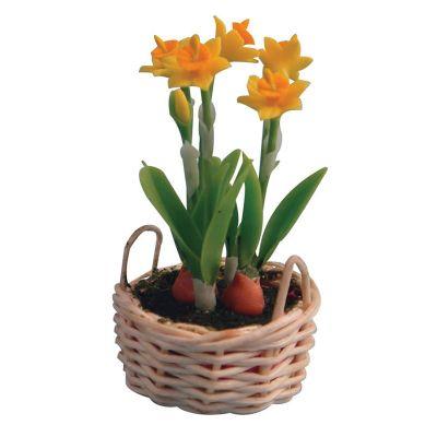 Daffodils in Basket