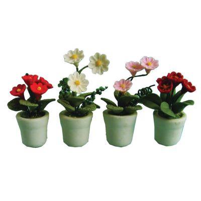 Flowers in Pots 4asst (price each pot)