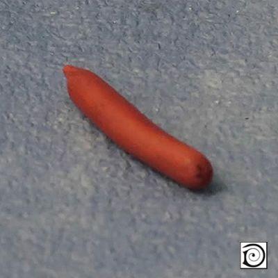Saveloy sausage