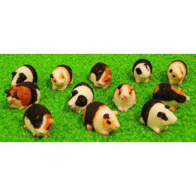 Guinea Pigs asst (priced each)