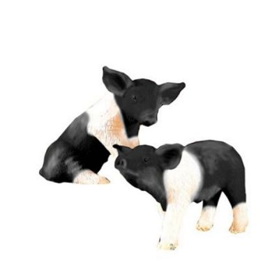 Black & White Piglets  DA020