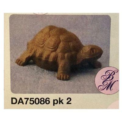 Large tortoise pk 2