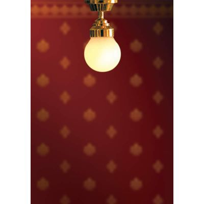 Ceiling Globe Light