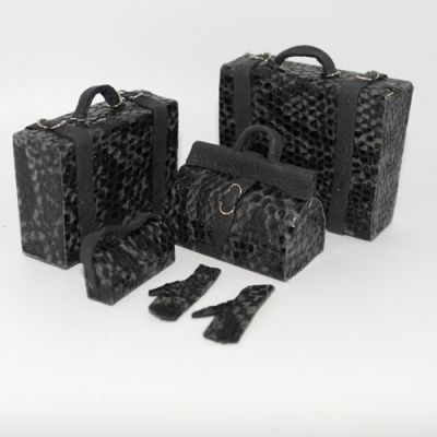 Suitcase and Handbag set
